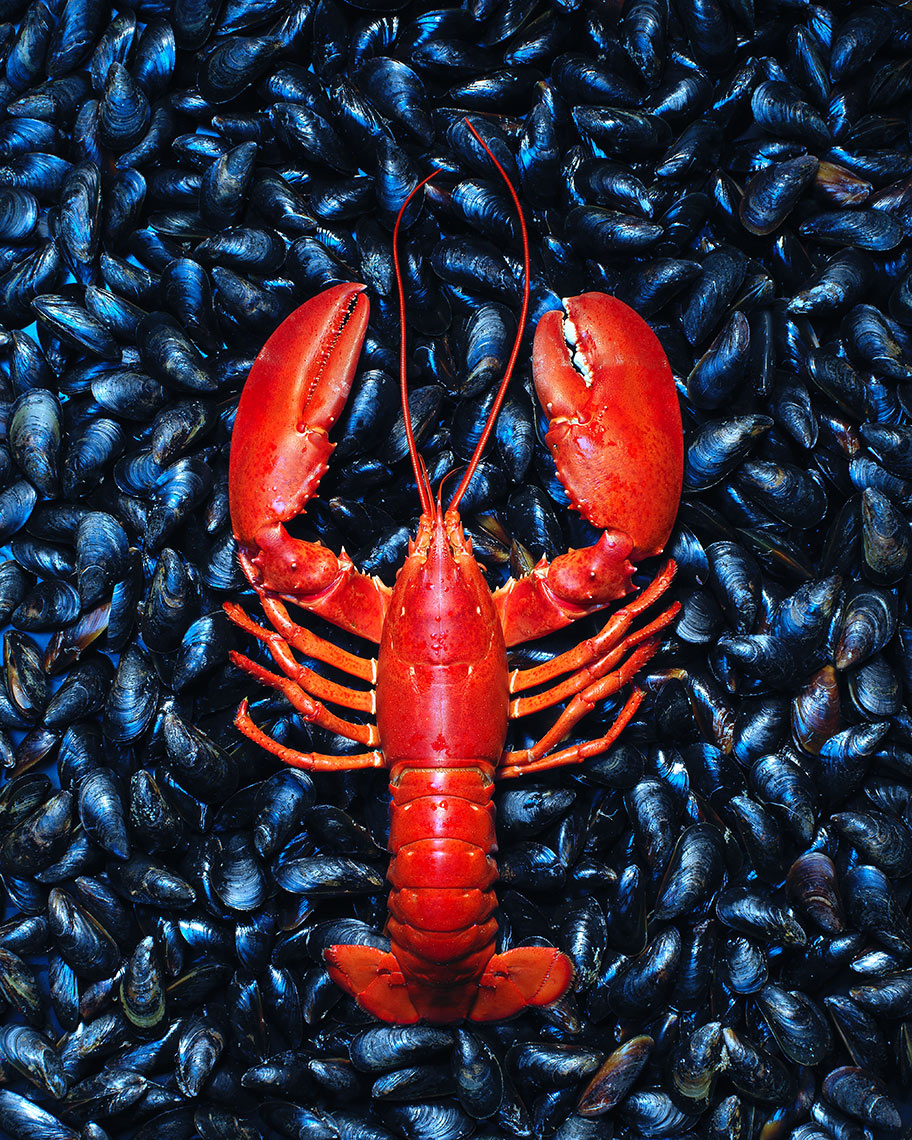 Lobster_Mussels