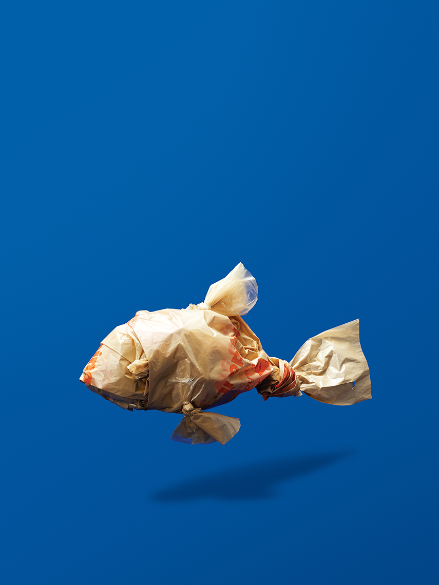 Plastic Bag Fish